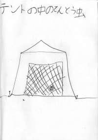 テントのなかのてんとう虫